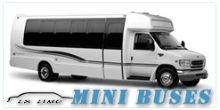 Mini Bus rental in Fort Myers, FL
