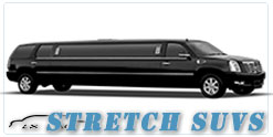 Wedding limousine in Fort Myers, FL