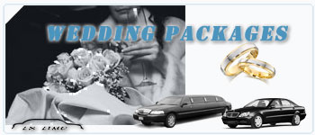 Fort Myers Wedding Limos